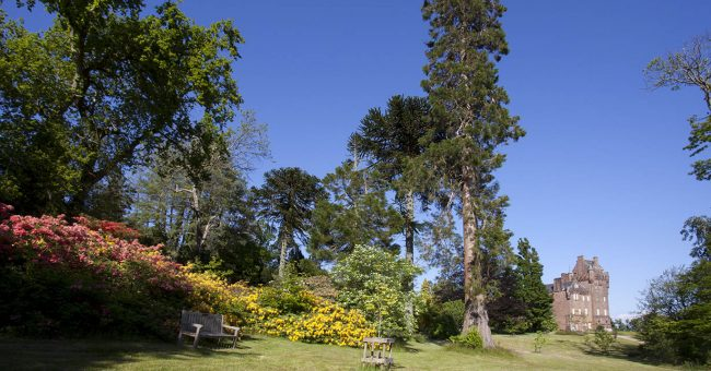 Garden Development at Brodick Castle