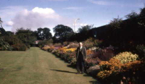 Archive 1950s Percy Cane Garden2