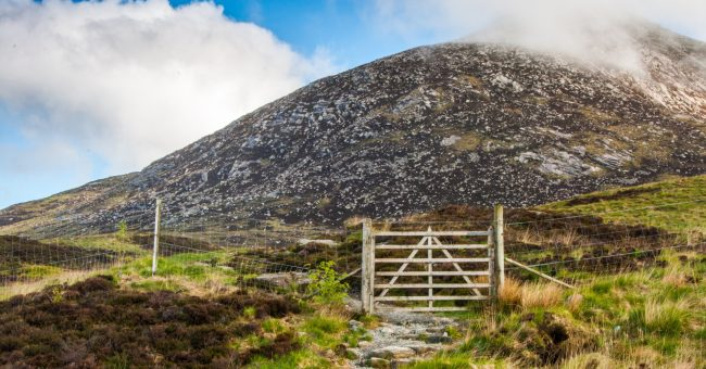 Environmental Projects at Goatfell